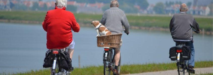 Preparar la jubilación y conseguir buena pensión